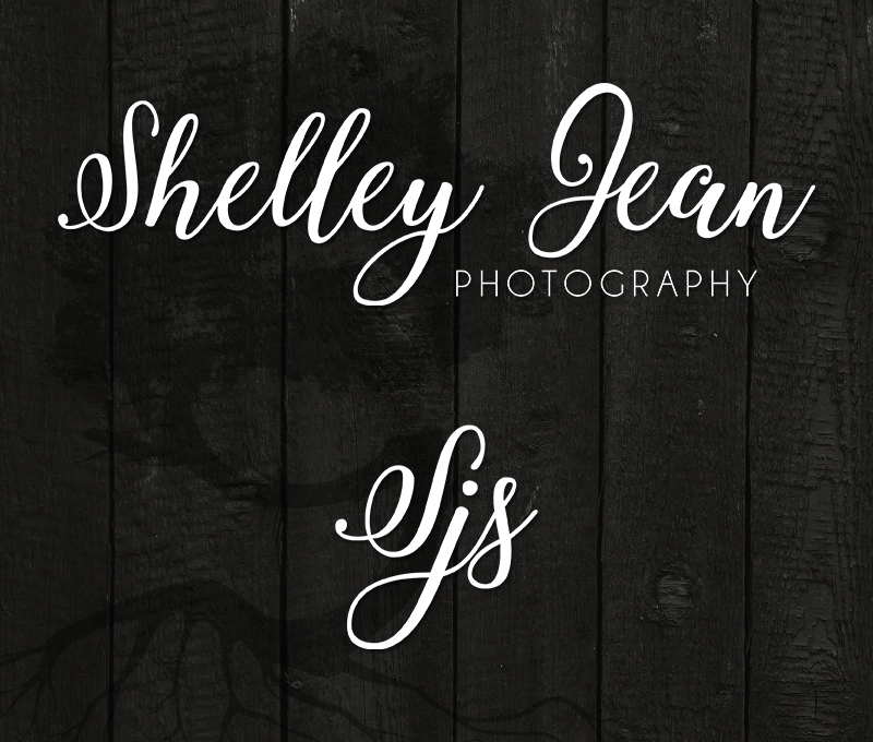 shelley jean photography